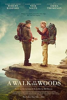 poster A Walk in the Woods (2015)