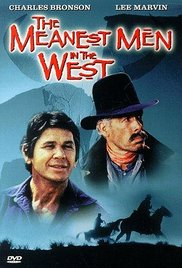 poster The Meanest Men in the West (1978)