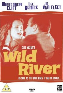 poster Wild River (1960)