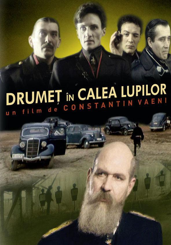 poster Drumeț în calea lupilor (1988)