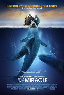 poster Big Miracle (2012)