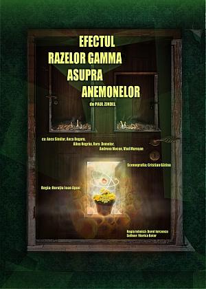 poster Efectul razelor gamma asupra anemonelor (Teatru TV) (1977)
