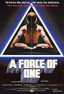 poster A Force of One (1979)