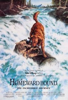 poster Homeward Bound - The incredible journey (1993)