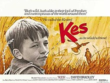 poster Kes (1969)