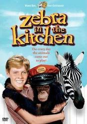 poster Zebra in the Kitchen (1965)