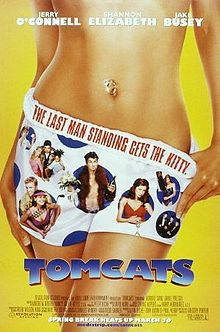 poster Tomcats (2001)