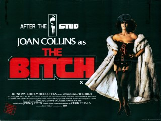 poster The Bitch (1979)