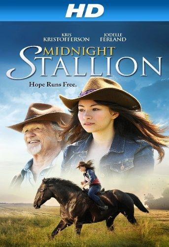 poster Midnight Stallion (2013)