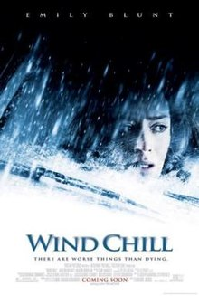 poster Wind Chill (2007)