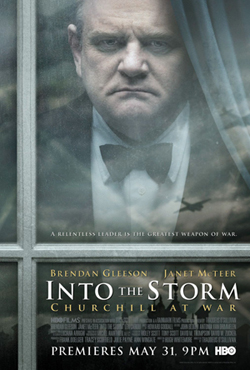 poster Into The Storm (2009)