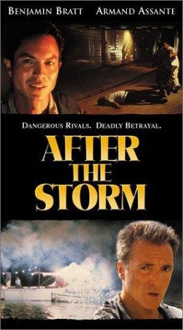 poster After the Storm (2001)