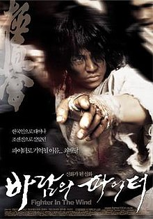 poster Fighter in the Wind (2004)
