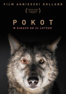 poster Pokot (2017)