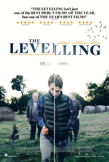 poster The Levelling (2016)