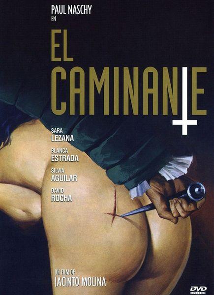 poster The Traveller (El Caminante) (1979)