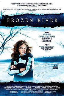 poster Frozen River (2008)