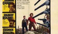 poster Guns of the Timberland (1960)