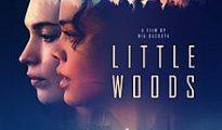 Împotriva legii - Little Woods (2018)