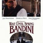 poster Wait Until Spring, Bandini (1989)