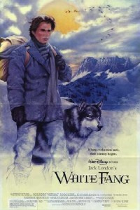 poster film colt alb - white fang film - film cu subtitrare in limba romana